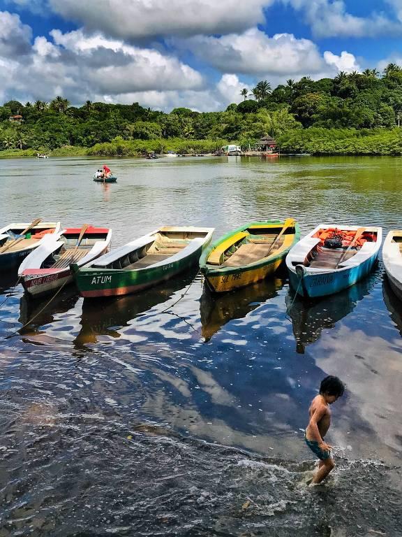 Canoas em fileira, em rio, com criança brincando na água