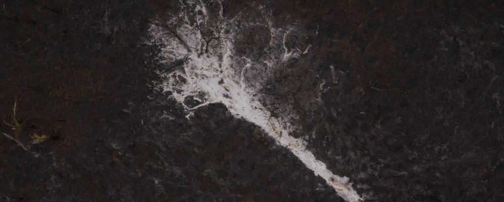 Cinzas de uma arvore totalmente queimada no pasto devastado pelo incêndio que atingiu a fazenda São Francisco, do pecuarista Pedro Oliveira Rodrigues, no município de Santo Antonio Leverger (MT)
