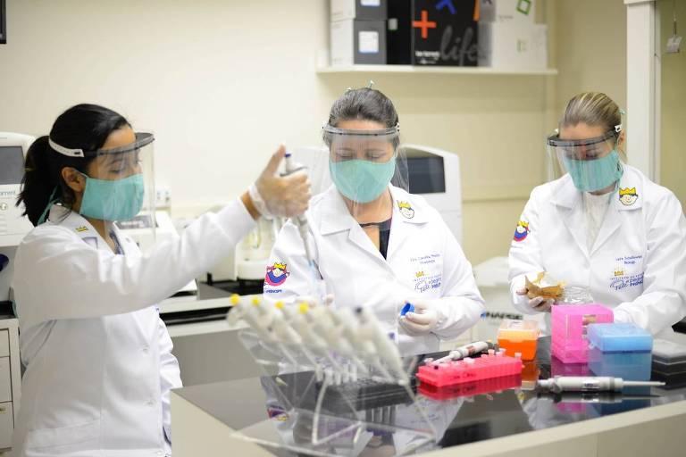 Cientistas indicam que o próprio sistema imunológico agravou casos de Covid-19 em pelo menos 10% dos pacientes
