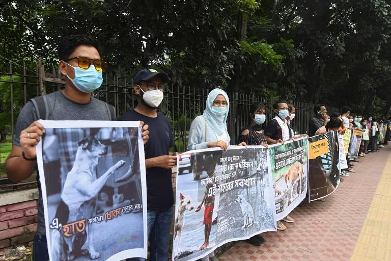 Usando máscaras, pessoas seguram cartazes mostrando animais de rua