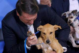 Brazil's President Jair Bolsonaro holds his dog 'Nestor' during a sanction ceremony of the law for the defense of animals