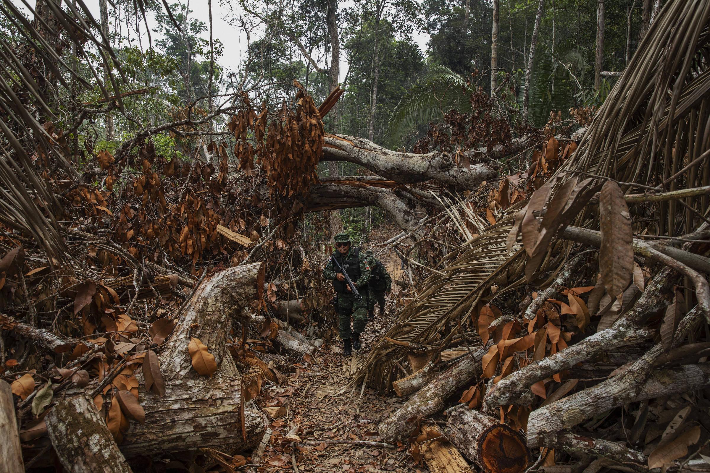 Fiscais do Ipaam (Instituto de Proteção Ambiental do Amazonas), escoltados por policiais militares, vistoriam um desmatamento recente no município de Apuí, no sul do Amazonas