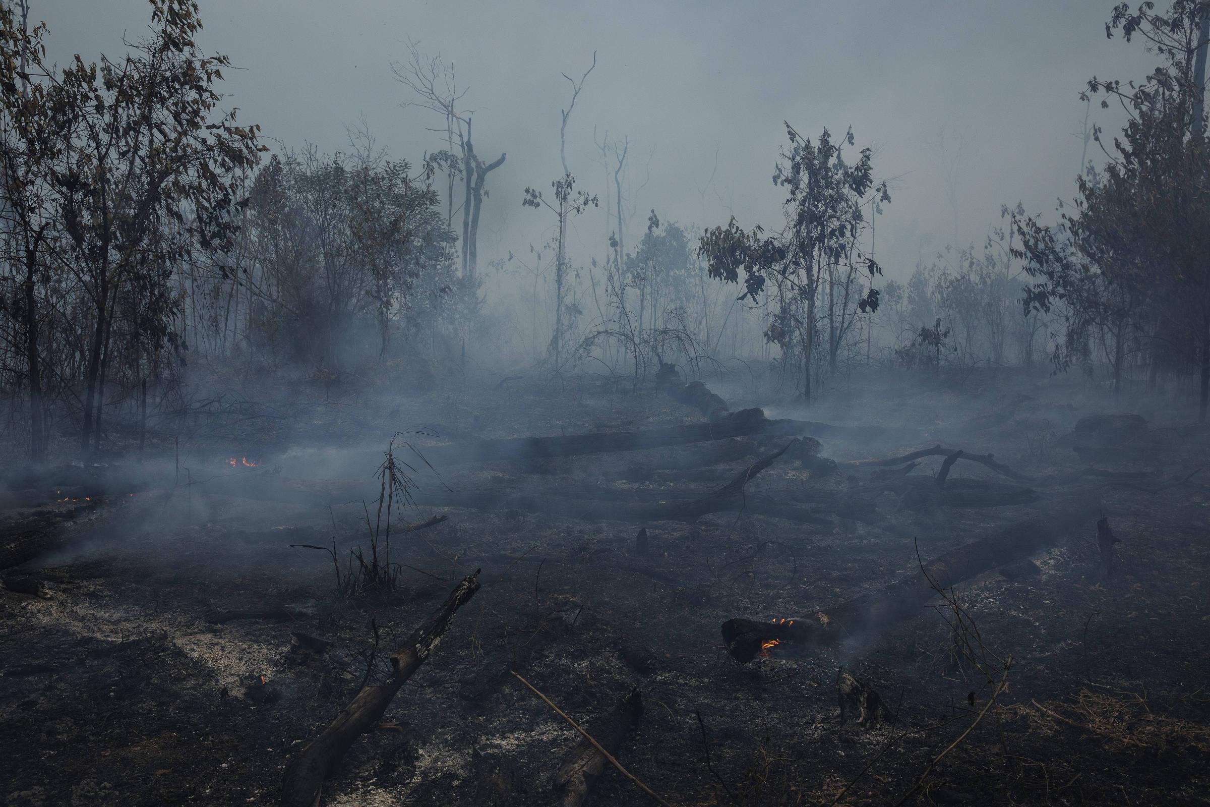 Queimada em área próxima à rodovia Transamazônica, na zona rural de Apuí, no sul do Amazonas