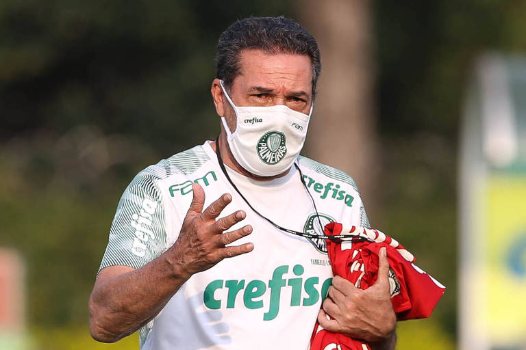 Sob o comando de Vanderlei Luxemburgo, o Palmeiras já está há 20 jogos invicto