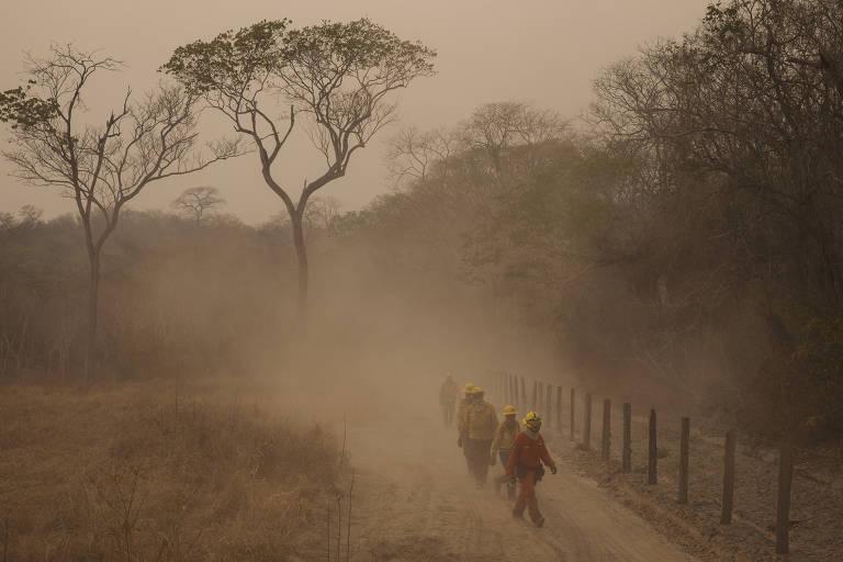 Brigadistas caminham em um acero com poeira, perto de uma floresta.