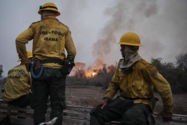 Três brigadistas no primeiro plano observam um incêndio em floresta no segundo plano.