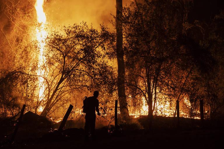 Pantanal do Mato Grosso do Sul em chamas