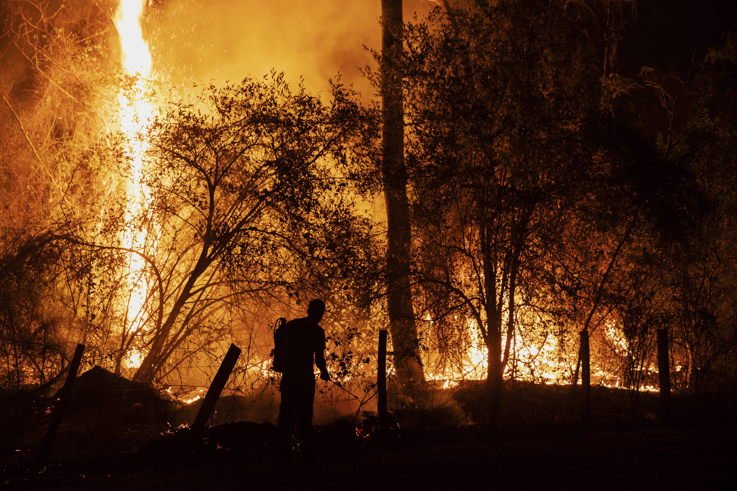 Pantanal tem pior outubro de queimadas da história e fogo cresce 121% na Amazônia