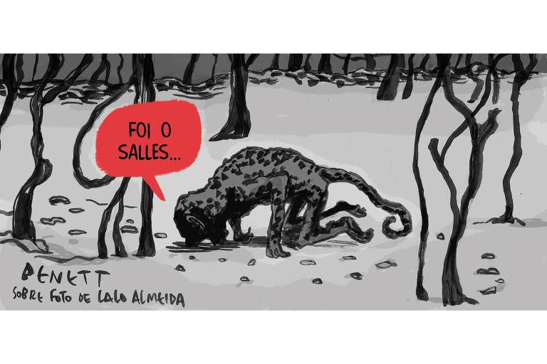 Ilustração representa a foto onde está um macaco carbonizado por incêndio no Pantanal. Balão direcionado ao macaco diz, Foi o Salles