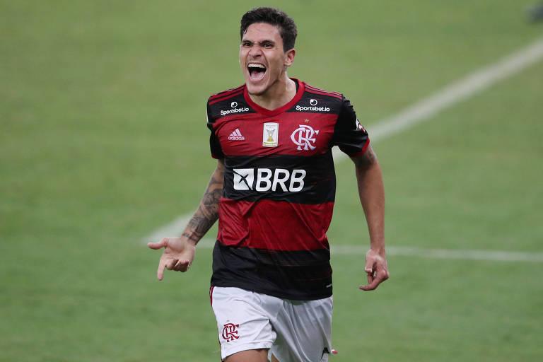 Pedro comemora gol marcado pelo Flamengo no Brasileiro