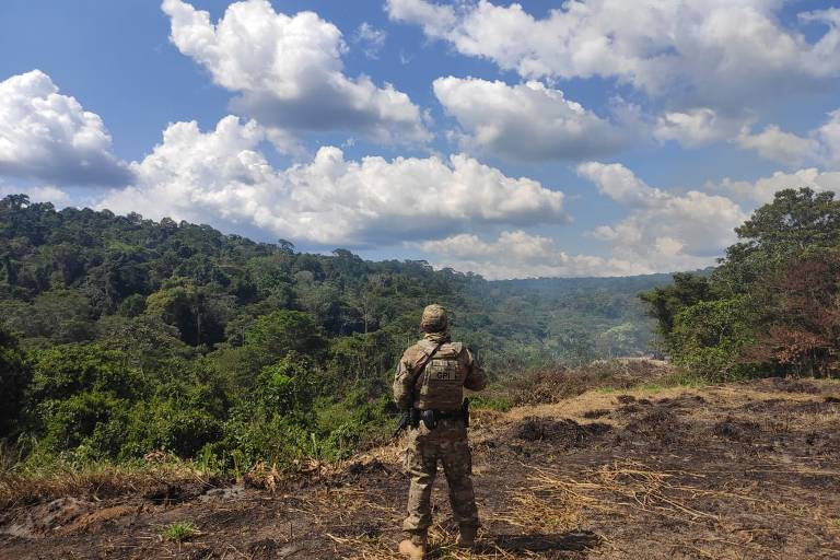 Agente em áreas desmatada olha para a floresta, que se perde no horizonte