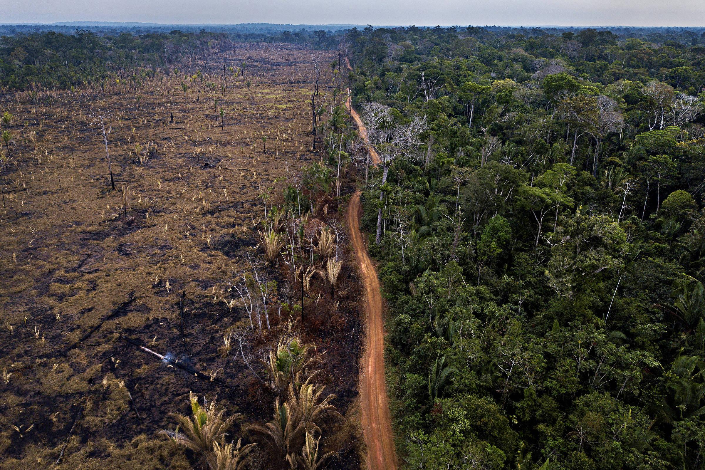 Área desmatada na APA Rio Pardo, no limite com a Floresta Nacional Bom Futuro, em Rondônia, em imagem de 2018