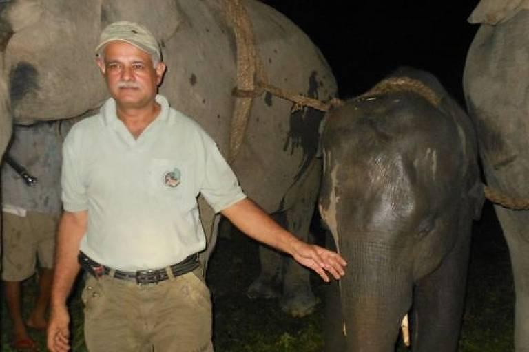 Veterinário de elefantes na Índia