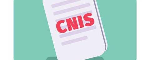 9. O que é CNIS do INSS?