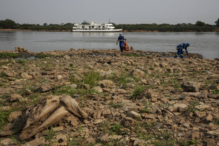 Fogo no Pantanal afeta ambiente e pecuária, mas corrupção norteia eleição em Corumbá