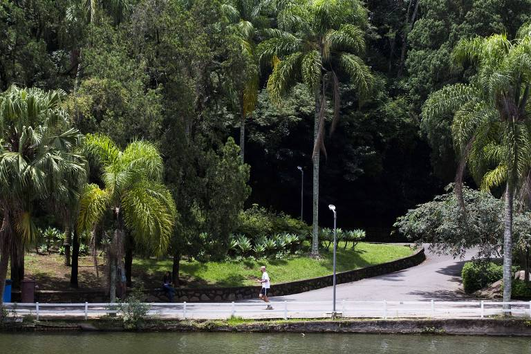 Homem corre no Horto Florestal, que tem 35 hectares de sua área para visitação