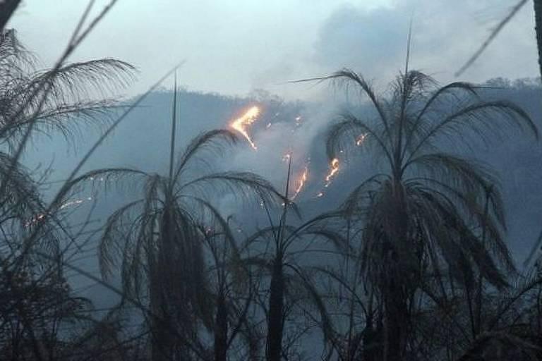 Especialistas consideram que somente chuvas intensas podem apagar completamente novos incêndios no bioma
