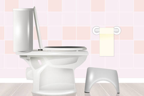 illustration of toilet and squatty potty