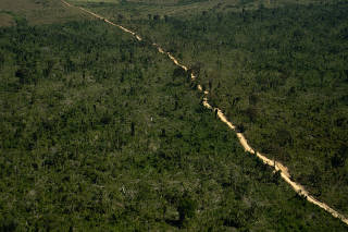 Deforestation of 1,700 Hectares in the Jamanxim APA in the Amazon in Brazil