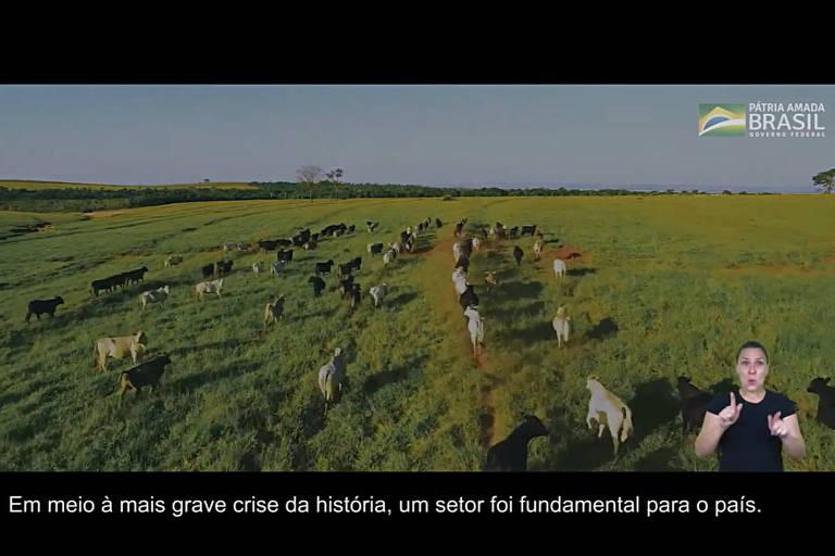 Frame de propagandas do governo Bolsonaro sobre a pandemia de Covid-19