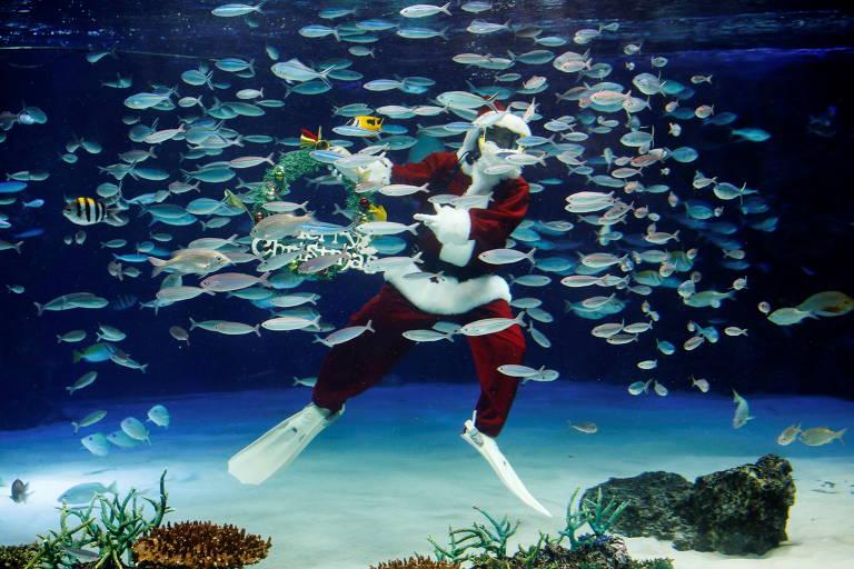 Uma mergulhadora vestindo a fantasia de Papai Noel nada em um grande aquário durante uma apresentação subaquática para a celebração do Natal, em meio ao surto da doença coronavírus (COVID-19), no Sunshine Aquarium em Tóquio, Japão
