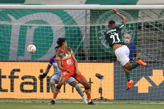 Copa Libertadores - Palmeiras v Delfin