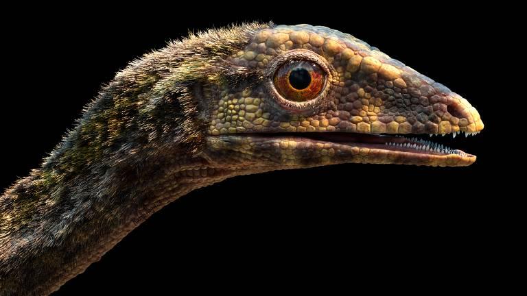 Répteis que viviam em árvores ajudam a desvendar origem dos pterossauros