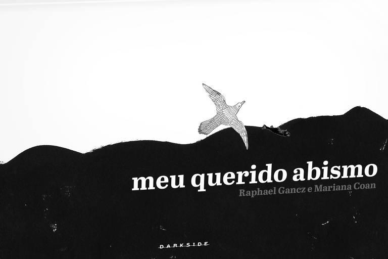A capa do livro mostra um pássaro voando entre uma área branca e outra preta