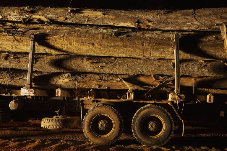 Madeira ilegal apreendida durante operação do Ibama em Uruará, no Pará