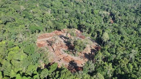 PF diz ao STF que Salles atrapalha fiscalização ambiental e pede que ministro seja investigado