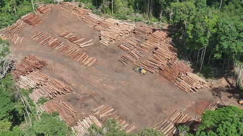 Toras de madeira nativa apreendidas durante a Operação Handroanthus GLO, da Polícia Federal, no oeste do Pará.?Foto:Polícia Federal/Divulgação ORG XMIT: GPS: S 2 40.0   W 55 50.0