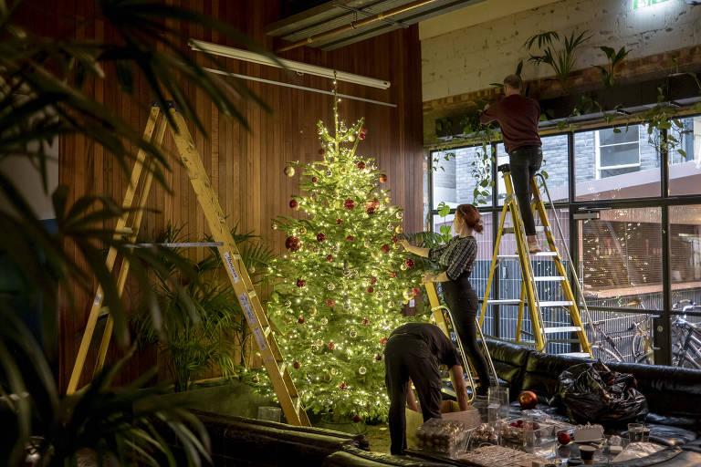 O inverno está ótimo na Europa, se você vende árvores de Natal