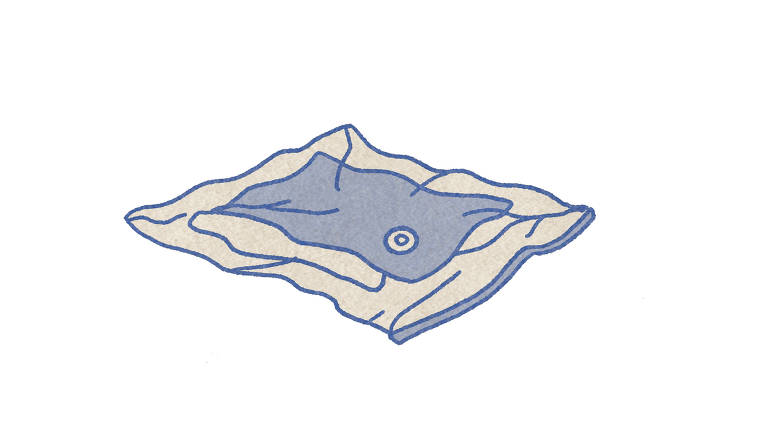 Sacos a vácuo - Eles diminuem o volume de edredons, travesseiros, cobertores e roupas de inverno. Para que as peças brancas não fiquem amareladas, embrulhe-as em um papel celofane azul