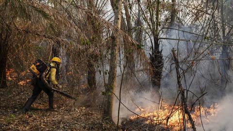 Corumba, MS. 04/10/2020. SERRA DO AMOLAR - Brigadistas do Piauí, do Prevfogo do IBAMA, combatem o fogo utilizando um soprador na fazenda Santa Tereza, na região da Serra do Amolar, no Pantanal do Mato Grosso do Sul. Cerca de 60% da fazenda foi consumida pelo fogo.  ( Foto: Lalo de Almeida/ Folhapress ) COTIDIANO *** EXCLUSIVO FOLHA***