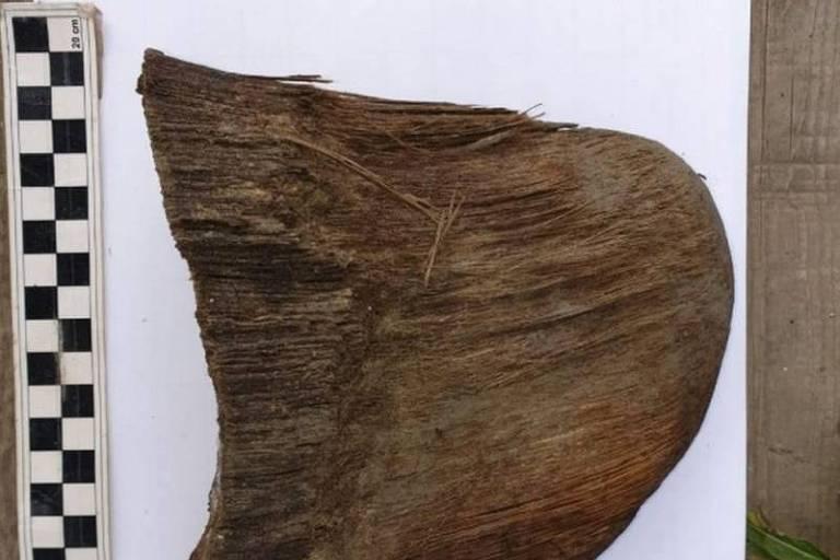 O chifre de rinoceronte foi encontrado quase intacto ao lado da carcaça
