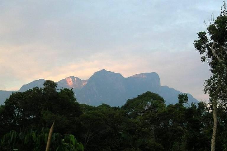 Expedição para o Pico da Neblina tem navegação e trilha