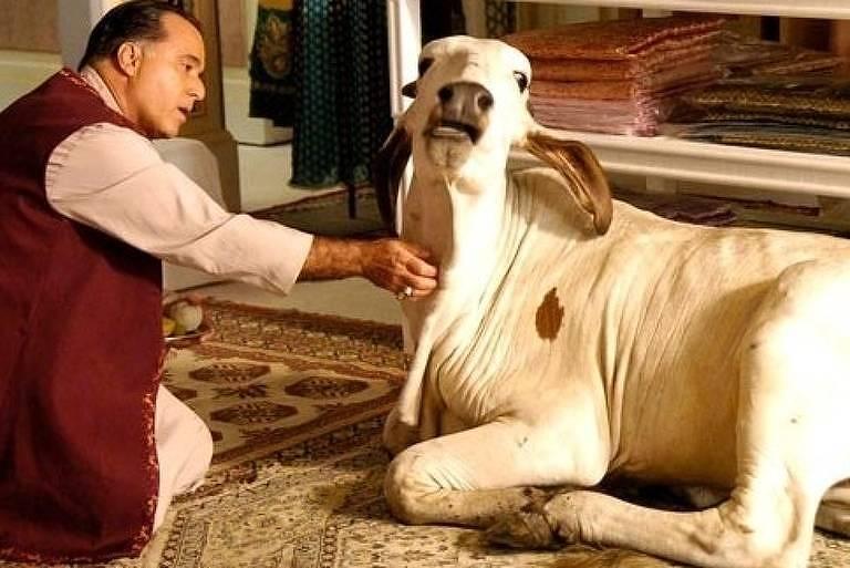 A vaca Emília da novela 'Caminho das Índias'