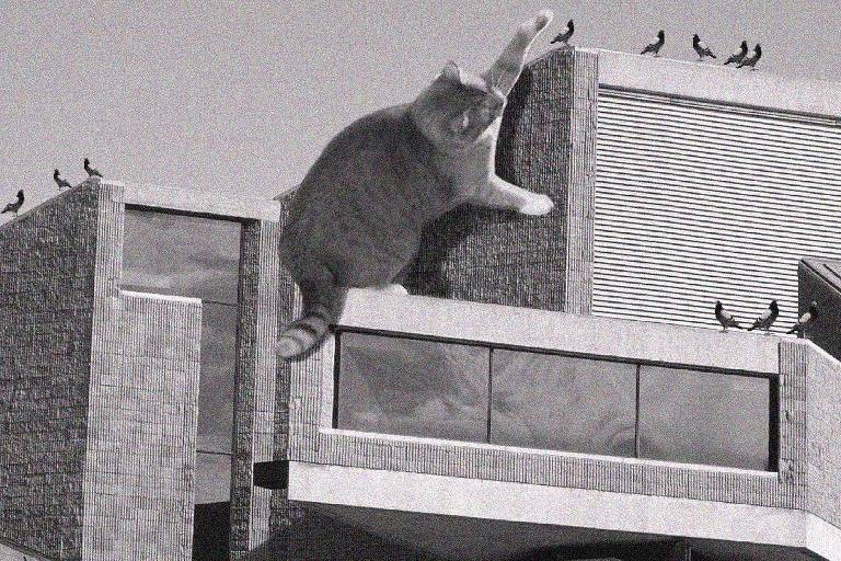 Primeira foto publicada no perfil Cats of Brutalism é da biblioteca Earl W. Brydges, em Niagara Falls, cidade do Estado de Nova York, com uma gata amarela e branca