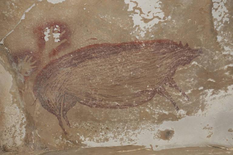 Desenho de porco-selvagem em caverna na Indonésia é o mais antigo feito por seres humanos