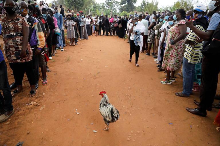 Eleições em Uganda