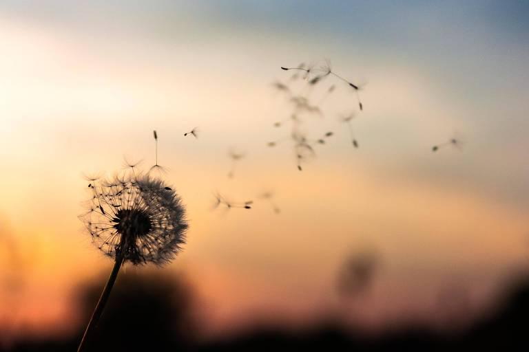 Céu astrológico da semana indica agitação, impaciência e acontecimentos inesperados