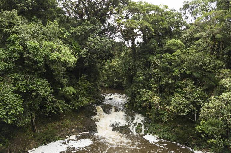 Cachoeira do Sagui, na região de Engenheiro Marsilac, no extremo sul de São Paulo