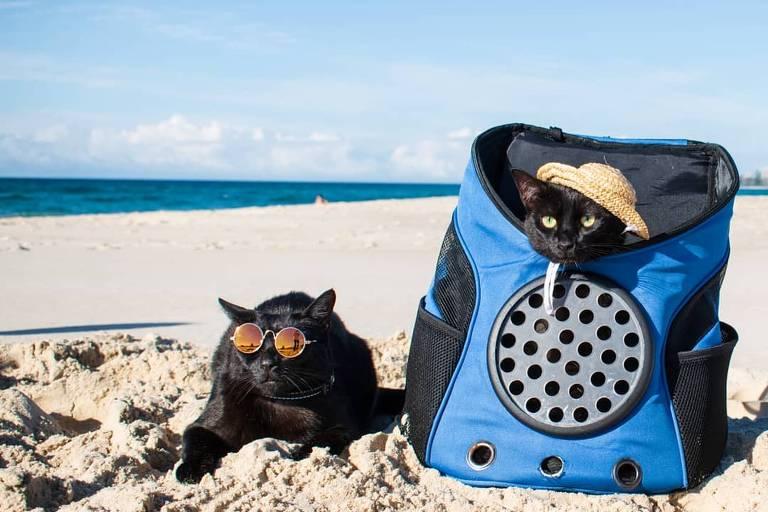 Nathan, de óculos escuros, e Winnie, de chapéu, em Gold Coast, em Queensland, na costa leste da Austrália