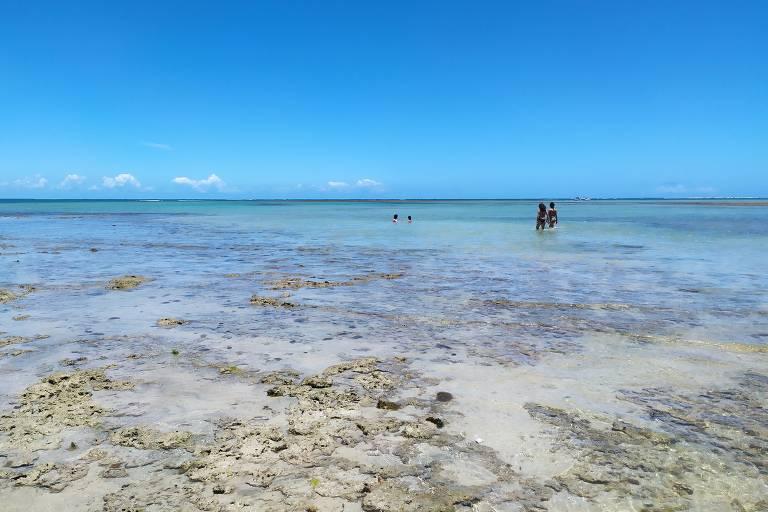 Pessoas em praia com água rasa