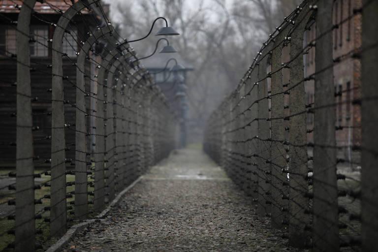 Como comparar o Holocausto com o momento atual