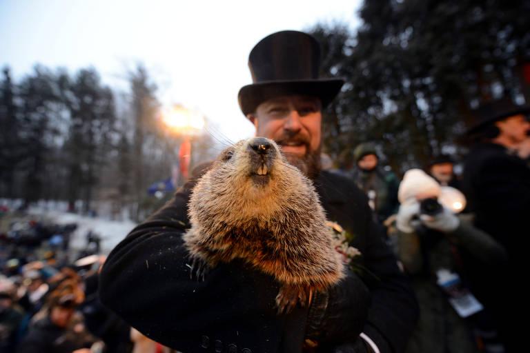 Veja imagens do 'Dia da Marmota'