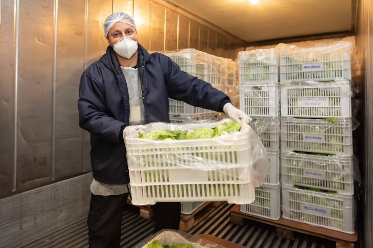 homem de touca e máscara, com blusa azul, segurando cesto com verduras
