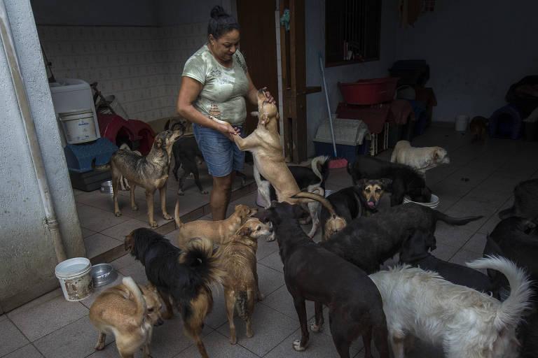 Mulher é rodeada por cachorros em um quintal.