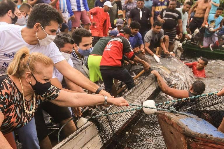 Governador do Pará provoca aglomeração na abertura da pesca de peixe amazônico