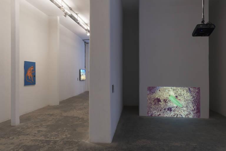 Exposição coletiva 'Uma História Natural das Ruínas', no Pivô